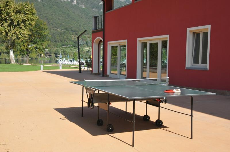 Il ping-pong
